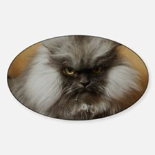 Colonel Meow scowl face Decal