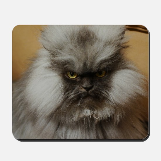 Colonel Meow scowl face Mousepad