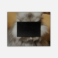 Colonel Meow scowl face Picture Frame