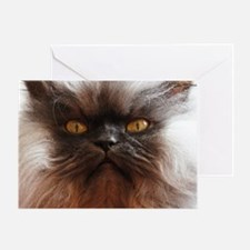Colonel Meow smells scotch and treat Greeting Card