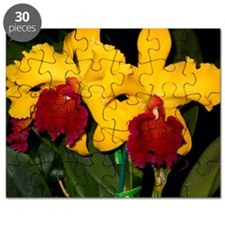 orchid022 Puzzle