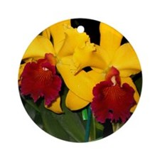 orchid022 Round Ornament