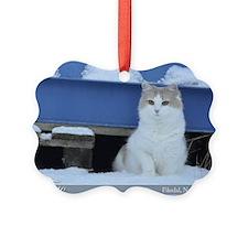 Figo january cat snow Picture Ornament