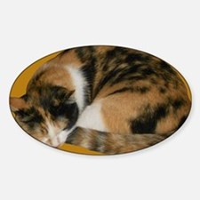 Callico Napping Sticker (Oval)