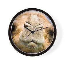 Dromedary camel Wall Clock