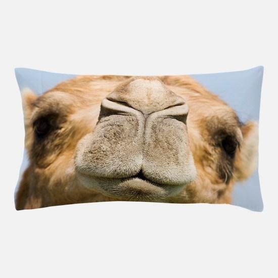 Dromedary camel Pillow Case