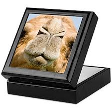 Dromedary camel Keepsake Box