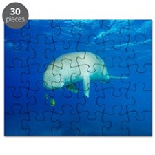 Dugong, remora and golden trevallies Puzzle