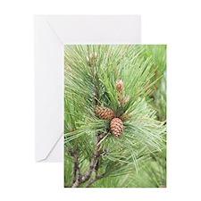ipadMini_PineCones_1 Greeting Card