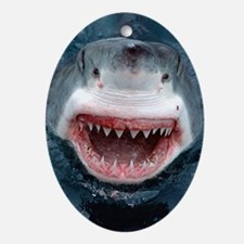 great white shark Oval Ornament