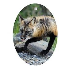 ipadMini_Fox_1 Oval Ornament