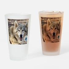 00cover-SFWS-yoda Drinking Glass