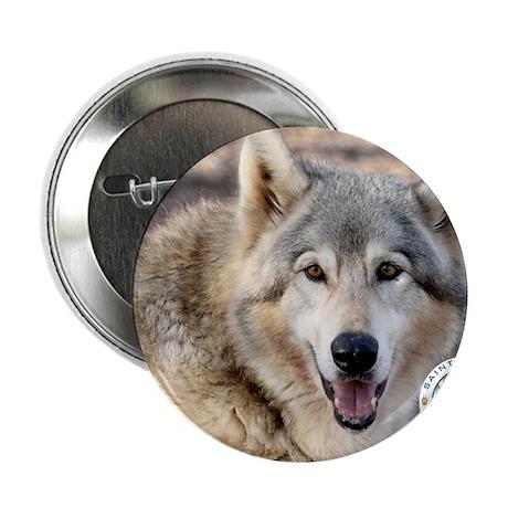 """00cover-SFWS-yoda 2.25"""" Button"""