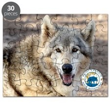 00cover-SFWS-yoda Puzzle