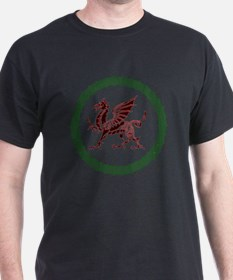 Celtic Knots And Red Dragon T-Shirt