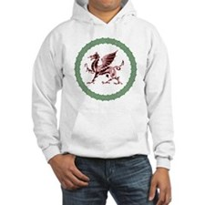Celtic Knots And Red Dragon Jumper Hoody