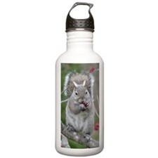 Squirrel with paws ful Sports Water Bottle