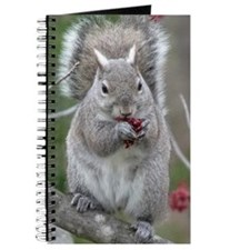 Squirrel with paws full. Journal