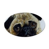 Pug Oval Car Magnets