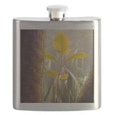 New leaf (3) - Flask