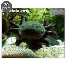 Axolotl Puzzle