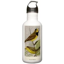 Hooded Warbler Water Bottle