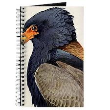 Bateleur Eagle Journal