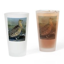 Four Banded Sand Grouse Drinking Glass