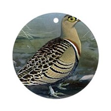 Four Banded Sand Grouse Round Ornament