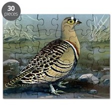 Four Banded Sand Grouse Puzzle