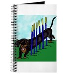 An Agility Dachshund? Journal