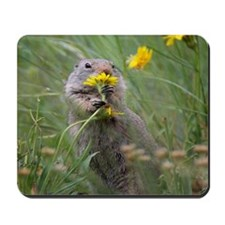 Morning Flowers Mousepad