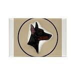 Manchester Terrier Rectangle Magnet (10 pack)
