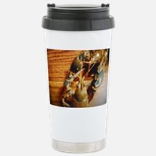 Crayfish Fight Stainless Steel Travel Mug