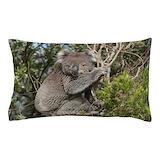 Koala Pillow Cases