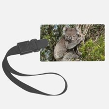 koala12 Luggage Tag