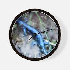 Blue Salamander Wall Clock