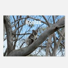 Koala Cover Postcards (Package of 8)