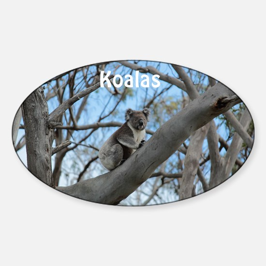 Koala Cover Sticker (Oval)