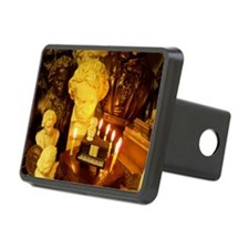 Beethovens Birthday Party Hitch Cover