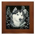 Alaskan Malamute with Snow Framed Tile