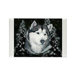 Alaskan Malamute with Snow Rectangle Magnet (10 pa