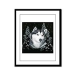 Alaskan Malamute with Snow Framed Panel Print
