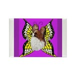 Colorful Papillion Rectangle Magnet (100 pack)