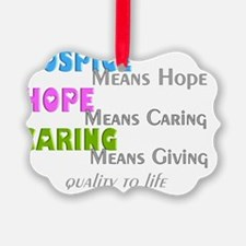 Hospice 2013 hope caring Ornament