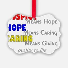 Hospice 2013 hope care red blue Ornament