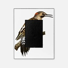Flicker Picture Frame
