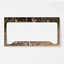 kangaroo9 License Plate Holder