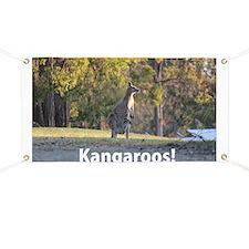 Kangaroos Banner