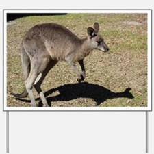 Kangaroo1 Yard Sign